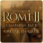 Total War: Rome 2 - Caesar in Gaul Campaign Pack