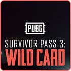 Playerunknown's Battlegrounds DLC Survivor Pass 3: Wild Card